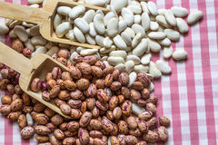 The Legumes. Dried Food; Legumes, Haricot and Kidney Royalty Free Stock Image
