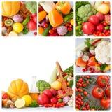 Legumes frescos - colagem Fotografia de Stock