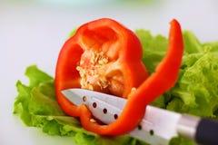Legumes frescos com uma faca na tabela para a preparação da salada Imagem de Stock