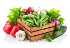 Legumes frescos com verdes Imagem de Stock
