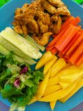 Legumes frescos e carne deliciosa para rolos de mola perfeitos fotos de stock royalty free