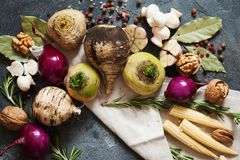 Legumes frescos e especiarias para a sopa do vegetariano Nabo, rabanete, onio Imagens de Stock Royalty Free