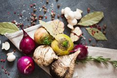 Legumes frescos e especiarias para a sopa do vegetariano Nabo, rabanete, onio Imagem de Stock