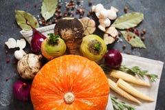 Legumes frescos e especiarias para a sopa do vegetariano Nabo, rabanete, onio Fotos de Stock Royalty Free