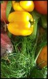 Legumes frescos em linha reta da exploração agrícola Imagem de Stock Royalty Free