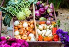 Legumes frescos em umas caixas, cestas Tomates, pepino Fotos de Stock Royalty Free