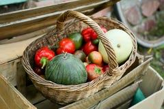 Legumes frescos na cesta Fotos de Stock