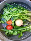 Legumes frescos na ?gua do dobre foto de stock