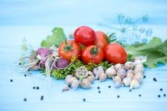 Legumes frescos no fundo azul de madeira natural Imagem de Stock Royalty Free