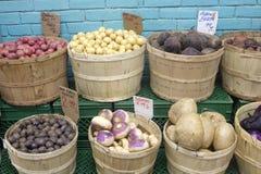 Legumes frescos no mercado fotografia de stock