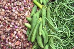 Legumes frescos no mercado da manhã, Myanmar Burma imagem de stock royalty free