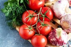 Legumes frescos para a opinião superior da salsa do aneto do alho dos tomates da salada Fotos de Stock