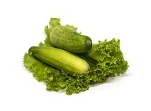 Legumes frescos, pepino e salada Fotografia de Stock