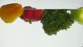 Legumes frescos que espirram na água no fundo branco video estoque