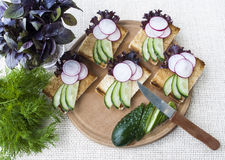 Legumes frescos, sanduíches do vegetariano com pepino e rabanete Imagem de Stock Royalty Free