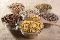 Legumes. Glass bowls of fava beans mignon lentils lentils chickpeas Borlotti beans and white beans Stock Images