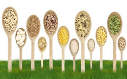 Legumes  on a grass field Stock Image