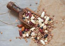 Legumes mieszanka w drewnianej łyżce Zdjęcia Stock