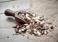 Legumes mix in the wood spoon Royalty Free Stock Photography