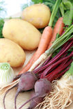 Legumes novos e frescos Imagens de Stock Royalty Free