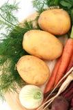 Legumes novos e frescos Imagens de Stock