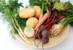 Legumes novos e frescos Imagem de Stock Royalty Free