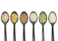 Legumes over spoons Stock Images