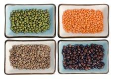 Legumes potpourri Stock Photography