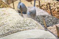 Legumes, seeds and nuts market. Legumes, seeds and nuts in the market Stock Photography