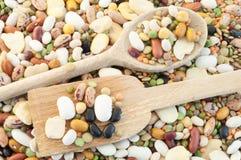 Legumes soup Stock Images