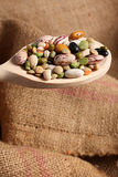 Legumes on a spoon Royalty Free Stock Photos