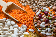 Legumes. Various legumes in a circle on background Royalty Free Stock Photography