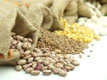 legumes varius Zdjęcie Stock