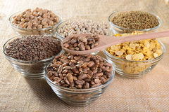 Legumes Royalty Free Stock Photo