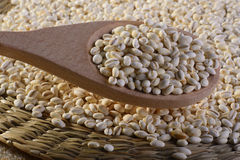 Legumes. A wooden spoon of barley with a wicker tray full of barley Royalty Free Stock Photography