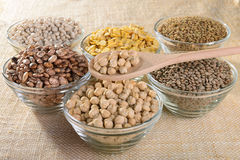 Legumes. A wooden spoon of chickpeas and glass bowls of mignon lentils, lentils, fava beans, white beans, Borlotti beans and chickpeas Stock Image