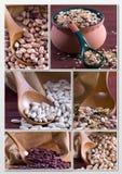 Legumi - collage Fotografie Stock Libere da Diritti