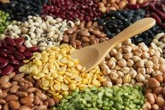 Legumi di grani della soia e seme matto Immagine Stock Libera da Diritti
