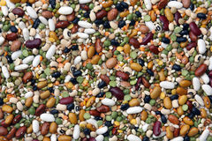Leguminosae mix seeds Royalty Free Stock Image