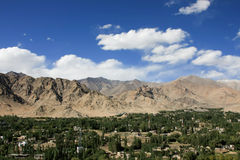 Leh市视图,拉达克,印度绿色山谷  免版税库存图片