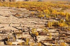 Leh村庄视图在北印度 免版税库存照片
