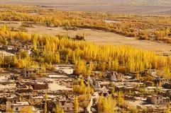 Leh村庄风景在北印度 库存照片