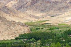 Leh di estate, Ladakh Immagine Stock Libera da Diritti