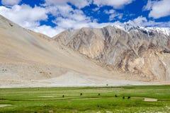 Leh district, India. Landscape around Leh district in Ladakh, India Stock Image