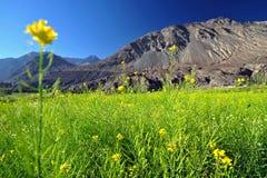 Leh, India. Mountain range Leh Ladakh India royalty free stock images
