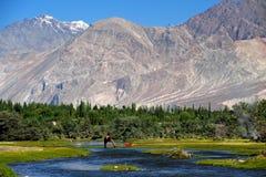 Leh, India. Mountain range Leh Ladakh India stock image