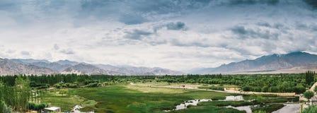 Leh ladakh绿色领域风景在印度 免版税库存图片
