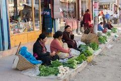 Leh Ladakh, Indien - Juli 8,2014: Die lokalen Frauen verkaufen Gemüse Lizenzfreie Stockbilder