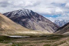 Leh område, Indien Royaltyfri Fotografi