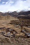 Leh palace. With snow mountain background Royalty Free Stock Photo